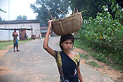 Tabasum Khatun, 14, is carrying some old hay on her head, to be disposed near her home in Algunda village, pop. 1000, Giridih District, rural Jharkhand, India.