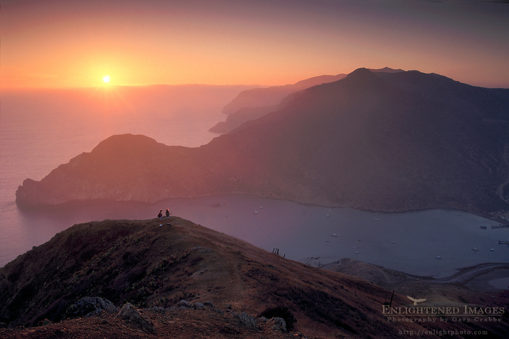 Hikers on hill above Catalina Harbor at sunset, Two Harbors area, Catalina Island, California Coast