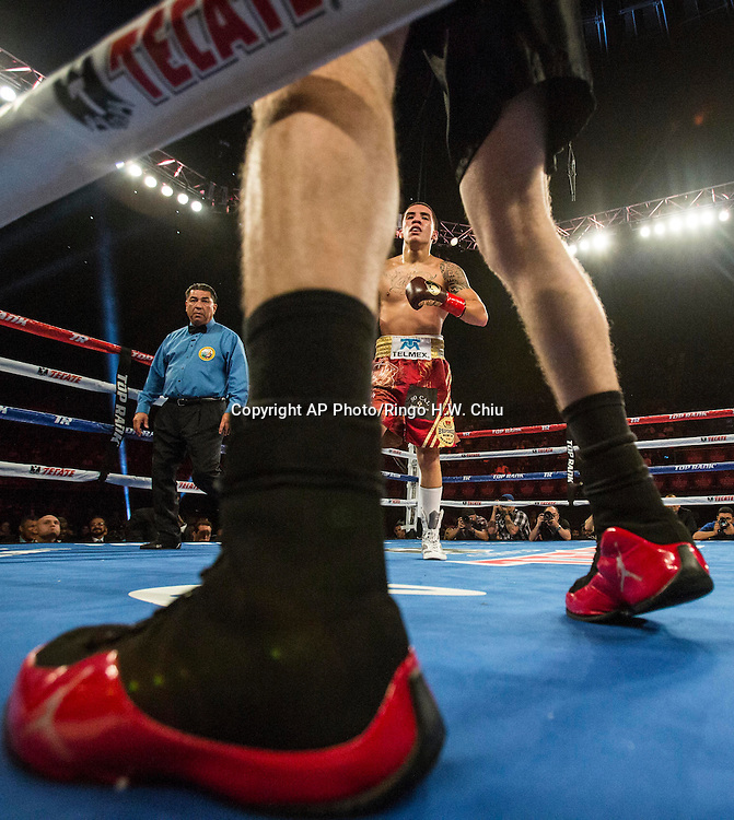 "Oscar Valdez, of Mexico in a NABF junior super featherweight title boxing match against Noel ""Shutup"" Echevarria, of Puerto Rico, at the Forum in Inglewood, Calif., Saturday, May 17, 2014. .  (AP Photo/Ringo H.W. Chiu)"