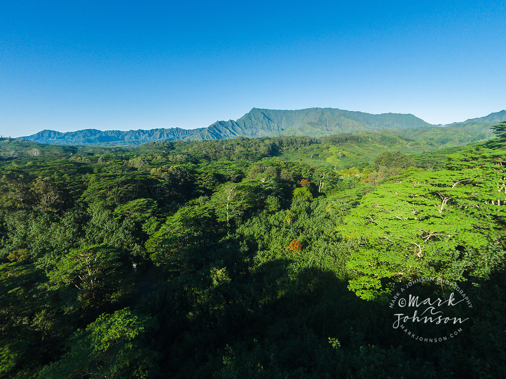 Aerial photograph of Mt Waialeale, Wailua, Kauai, Hawaii
