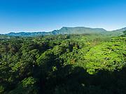 Aerial photograph of Mt Waialeale, Wailua, Kauai, Hawaii