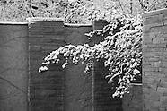 20120108 Snow