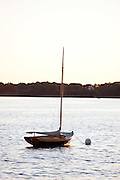 Herreshoff 12 1/2 at anchor.