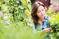 Portrait of beautiful gardener examining plants in shop