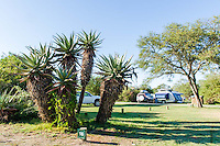 Camping sites at the Bontebok National Park, Bontebok National Park, Western Cape, South Africa