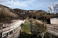 SARNO. UN CANALE DI DRENAGGIO DELLE ACQUE COMPLETAMENTE INTASATO DALLA FITTA VEGETAZIONE PRESENTE PER LA MANCANZA DI MANUTENZIONE DEI CANALI
