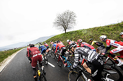 Peloton during cycling race 5th Grand Prix Adria Mobil, on April 7, 2019, in Novo mesto, Slovenia. Photo by Vid Ponikvar / Sportida