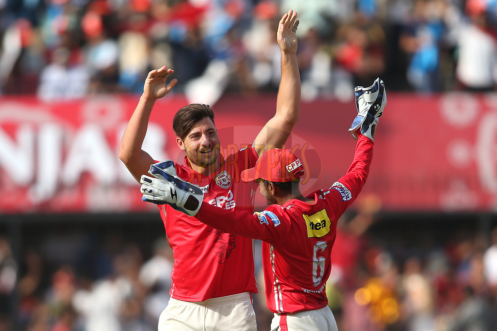 Marcus Stoinis of Kings XI Punjab is congratulated by Wriddhiman Saha of Kings XI Punjab for getting Rising Pune Supergiant captain Steven Smith wicket during match 4 of the Vivo 2017 Indian Premier League between the Kings XI Punjab and the Rising Pune Supergiant held at the Holkar Cricket Stadium in Indore, India on the 8th April 2017<br /> <br /> Photo by Shaun Roy - IPL - Sportzpics