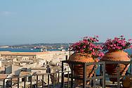 Geranium filled teracotta pots on a balcony overlooking Ortigia, Syracsue, Sicily, Italy