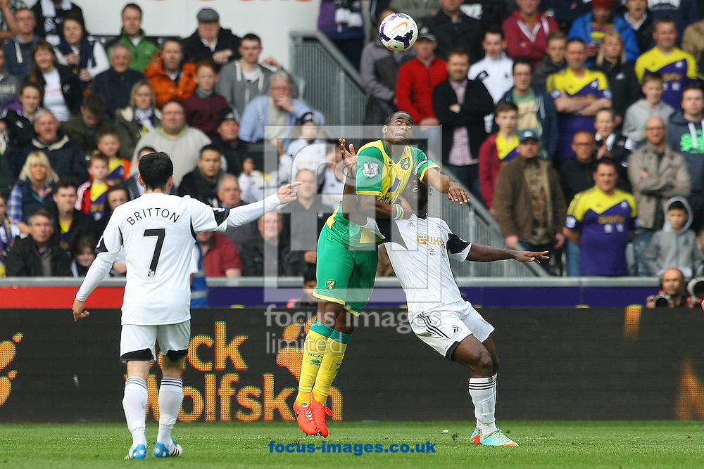 Sebastien Bassong of Norwich wins a header during the Barclays Premier League match at the Liberty Stadium, Swansea<br /> Picture by Paul Chesterton/Focus Images Ltd +44 7904 640267<br /> 29/03/2014
