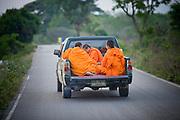 20 FEBRUARY 2008 -- KANCHANABURI, THAILAND: Buddhist monks in the back of a pickup truck in Kanchanaburi, Thailand.  Photo by Jack Kurtz