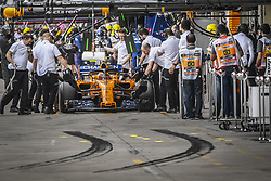 November 10, 2018 - Sao Paulo, Brazil - 02 VANDOORNE Stoffel (bel), McLaren Renault MCL33, action during the 2018 Formula One World Championship, Brazil Grand Prix from November 08 to 11 in Sao Paulo, Brazil -  FIA Formula One World Championship 2018, Grand Prix of Brazil World Championship;2018;Grand Prix;Brazil  (Credit Image: © Hoch Zwei via ZUMA Wire)