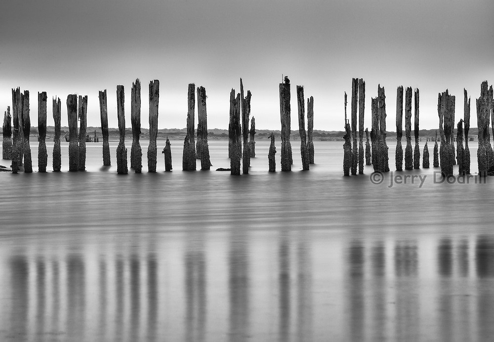 Old piers stand from the mud as tide rises at Bandon, Oregon