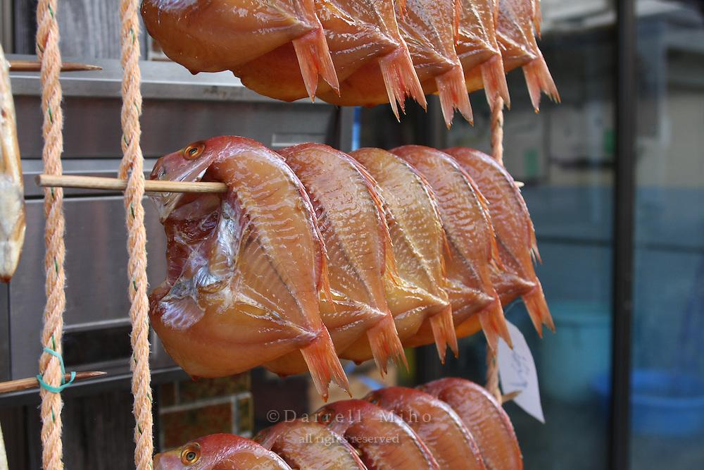 Jan. 21, 2009; Obama, Fukui Prefecture, Japan - Dried fish hang outside a store.