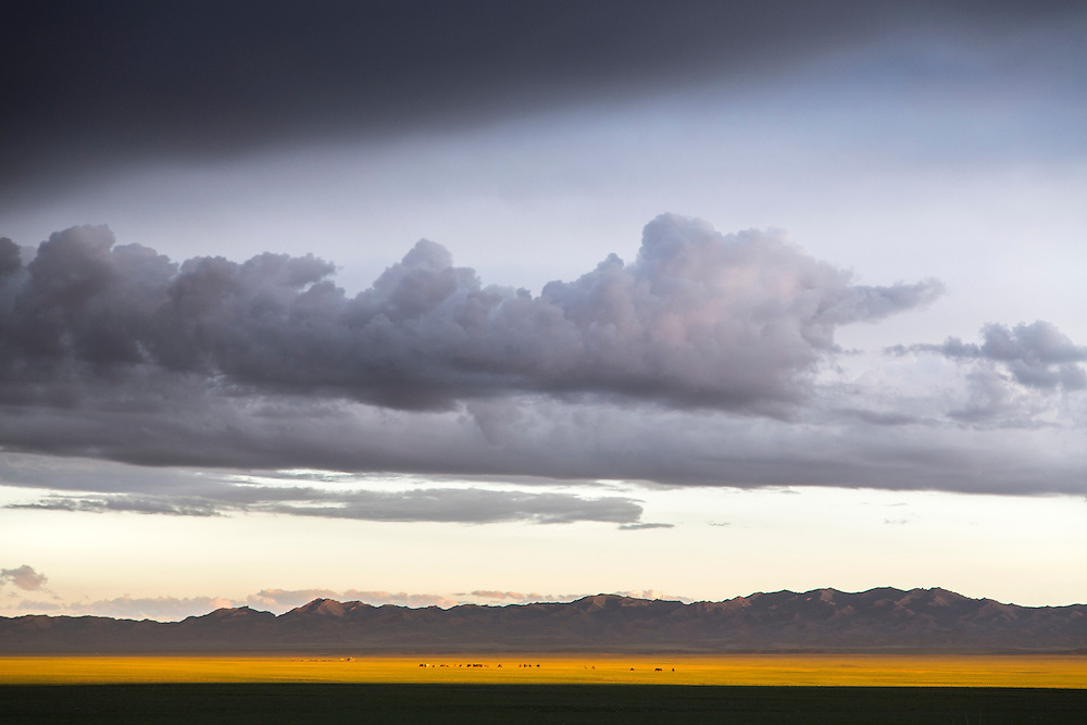The sunset lights up part of the Gobi Desert in Mongolia after a rainstorm on July 31, 2012. © 2012 Tom Turner Photography.