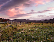 a typical new zealand country scene complete with a long farm fence disappearing into the distant hills is complimented by a pink sky sunset at Matarangi, Coromandel, New Zealand