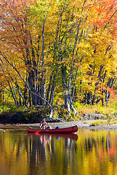 A man canoeing on the East Branch of the Penobscot River in Maine's Northern Forest. Fall.