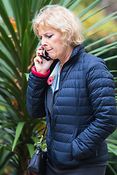 Downing Street, London, October 27th 2015.  Minister for Small Business, Industry and Enterprise Anna Soubry arrives at 10 Downing Street to attend the weekly cabinet meeting. /// Licencing: Paul Davey tel: 07966016296 or 02089696875 paul@pauldaveycreative.co.uk www.pauldaveycreative.co.uk