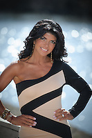 Teresa Giudice stock photos