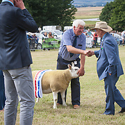 CR0002852 Kinross Show. David McKerrow, Northnochnary Farm, Freuchie, celebrates being awarded Overall Champion of Show. His sheep was also awarded Champion Sheep Interbreed, Champion Texil. 11 Aug 2018 © Copyright photograph by Tina Norris. Contact Tina on 07775 593 830 info@tinanorris.co.uk All print sales via Tina Norris. www.tinanorris.co.uk http://tinanorris.photoshelter.com