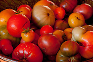 Heirloom tomatoe