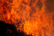 Nuclear Winter test fire: brush fires deliberately started to study the potential climatic effects of a nuclear war. The nuclear winter theory predicts that smoke from fires burning after a nuclear war would block sunlight, causing a rapid drop in temperature that would trigger serious ecological disturbance. The test burn took place in December 1986 on 500 acres of brush in Lodi Canyon, Los Angeles. Dripping napalm from a helicopter ignited the fire. Ground-based temperature sensors were used to study soil erosion. Various airborne experiments included smoke sampling & high-altitude infrared imaging from a converted U-2 spy plane.