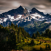 Paradise Area, Mount Rainier National Park, Washington State, USA