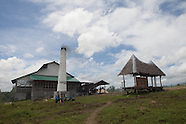 Sugar cane & the Philippines