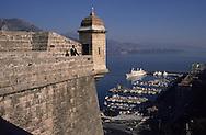 HRH Albert of Monaco, on the prince palace ramparts    S.A.S. Albert de Monaco sur les remparts du palais princier. Monaco  P0005193 L3205  R245/