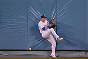 Los Angeles Dodgers center fielder Joc Pederson #31 hits the wall after missing a ball hit by Reds Jay Bruce in the 4th inning. Bruce would drive in one run on the play. The Los Angeles Dodgers played the Cincinnati Reds at Dodger Stadium in Los Angeles , CA.  May 25, 2016. (Photo by John McCoy/Southern California News Group