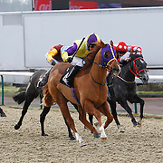 Roland and Graham Lee winning the 11.55 race