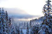 Idaho, Coeur d'Alene. A winter scene as mist rises from Lake Coeur d'Alene with snow covered trees and morning light. . PLEASE CONTACT US FOR DIGITAL DOWNLOAD AND PRICING.