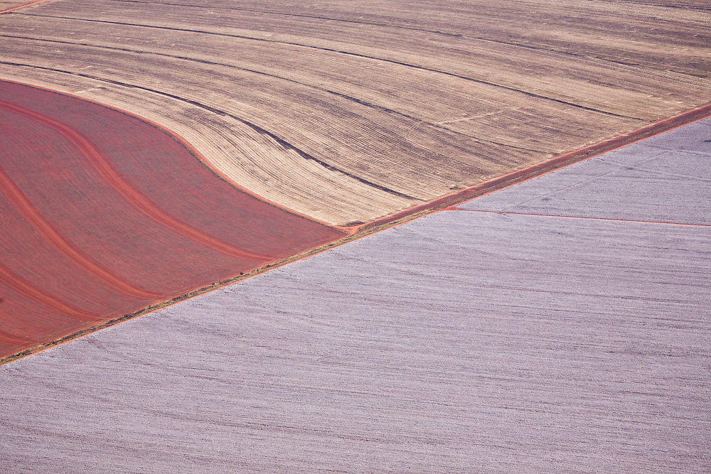 Farmland in the Tangana Da Serra region of Mato Grosso, Brazil, August 9, 2008. Daniel Beltra/Greenpeace