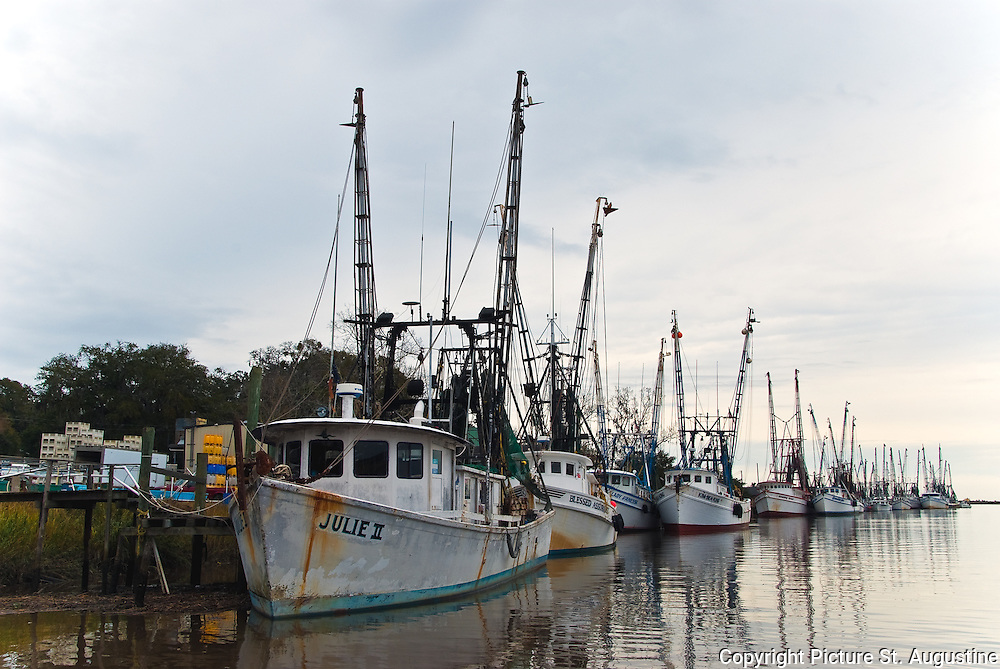Early on a cloudy morning in Darien, Georgia - the shrimp boat fleet at the docks.