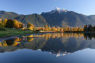 Mount Cheam is reflected in the waters of Maria Slough on Seabird Island (Sq'éwqel), Agassiz, British Columbia, Canada