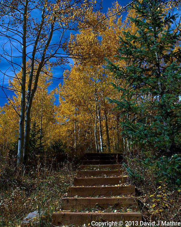 Stairway into the Fall Aspens, Ashcroft Ghost Town, Colorado. Gone to See America 2013. Image taken with a Leica X2 camera (ISO 100, 24 mm, f/16, 1/500 sec). Day 3 on a Colorado Rockies Photo Safari with Jason Odell.