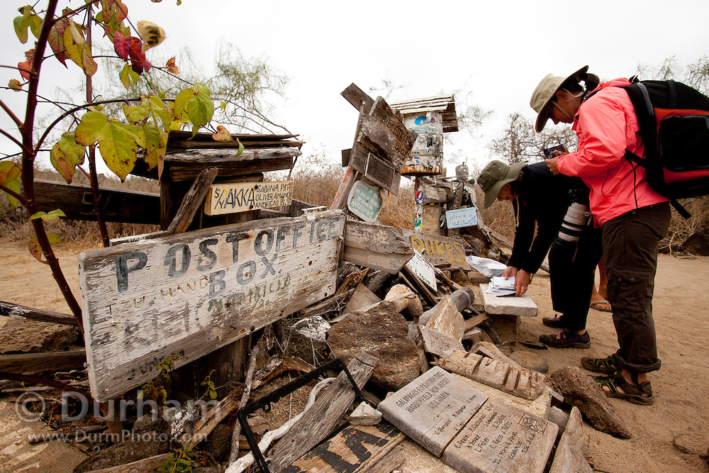 Visitors inspect mail at a postal exchange on the beach of Floreana Island. An old whisky barrel houses postcards from visitors the world over, each left in the hope that others will take their postcard home and deliver it. The Post Office Bay tradition has been going for over 200 years, since UK mariners set it up to allow packages and letters to be deposited and picked up by other passing ships en route to the appropriate destinations. Galapagos Archipelago, Ecuador.
