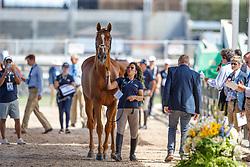 Goldstein Danielle, ISR, Lizziemary<br /> World Equestrian Games - Tryon 2018<br /> © Hippo Foto - Sharon Vandeput