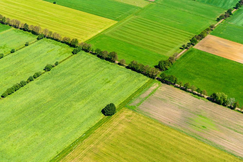 Nederland, Gelderland, Achterhoek, 29-05-2019; landelijk gebied, west van de lijn  Lichtenvoorde en Groenlo. Coulissenlandschap, typisch voor de Achterhoek.<br /> Rural area between Lichtenvoorde and Groenlo. Bocage landscape, typical of the Achterhoek.<br /> <br /> luchtfoto (toeslag op standard tarieven);<br /> aerial photo (additional fee required);<br /> copyright foto/photo Siebe Swart