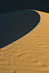 Shadows on dune, Monahans Sandhills State Park, Texas, USA.