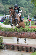 TRAVELLER ROYALE ridden by Simon Grieve at Bramham International Horse Trials 2016 at  at Bramham Park, Bramham, United Kingdom on 11 June 2016. Photo by Mark P Doherty.