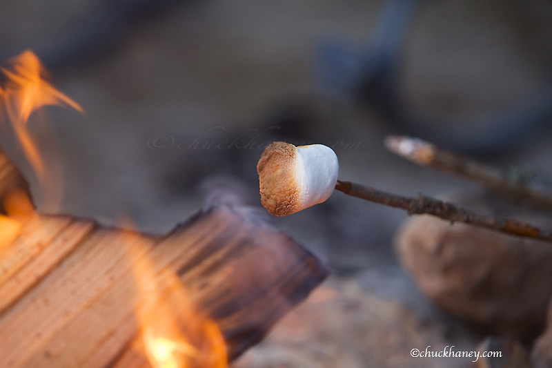Marshmallow roasting on a stick in campfire near Whitefish Montana