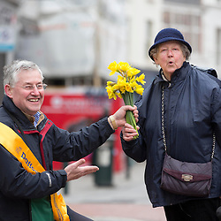 Daffodil Day Street sellers