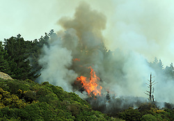 Fire crews respond to a scrub fire beside SH1 at the Tawa roundabout, Wellington, New Zealand, Monday, March 19, 2018. Credit:SNPA / Carl Natta  **NO ARCHIVING**
