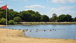 © Licensed to London News Pictures. 01/06/2020. LONDON, UK.  Canada geese at the water's edge by the empty beach at Ruislip Lido in north west London.  Hillingdon Council has closed the beach to the public following several days where the public were not adhering to social distancing as coronavirus pandemic lockdown restrictions have been eased by the UK government.  On the first day of the meteorological summer, visitors who travelled from out of the area resorted to finding a place to sunbathe on any patch of grass they could find.  Photo credit: Stephen Chung/LNP