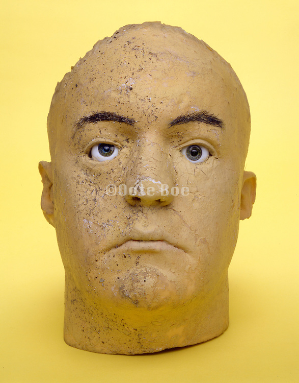still life of life like head against a yellow background