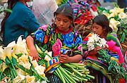 GUATEMALA, HIGHLANDS, MARKETS Chichicastenango; Sunday market day; Maya Indian women selling flowers on the steps of Santo Tomas church