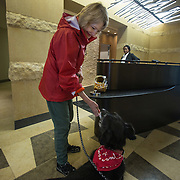 WASHINGTON, DC - OCT07:  Charity Struthers gives her dog Benny a treat at the front desk of her apartment building, the Park Chelsea Apartments, October 7, 2016, in Washington, DC. As new apartment buildings continue sprouting around downtown DC, developers know that a large percentage of renters in the city have dogs and make their choices of buildings based largely on pet-friendliness. So they go out of their way to be welcoming to dogs.  (Photo by Evelyn Hockstein/For The Washington Post)