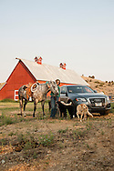 Ranch, cowgirl, quarter horse, barn, Montana.