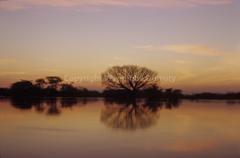 La riviere Magdalena au petit matin, Mompox, Bolivar, Colombie